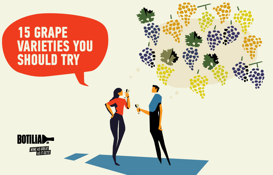 15 Grape Varieties You Should Try!